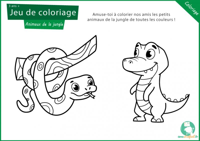coloriage gratuit des animaux de la jungle